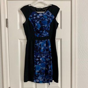Cynthia Steffe Silk Dress